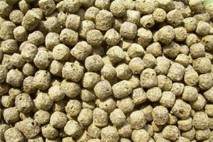 Extruded Fish Feed Pellets