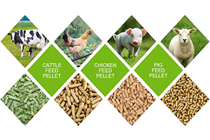 poultry feed pellets